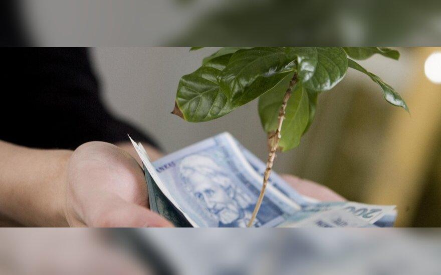 Kas Lietuvoje gali džiaugtis didžiausiu pelnu?
