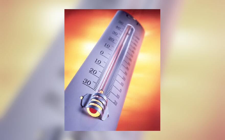 termometras, temperatūra, karštis, liga, sirgti