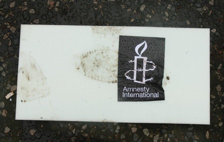 Управляющий турецкого Amnesty International задержана неподалеку от Стамбула