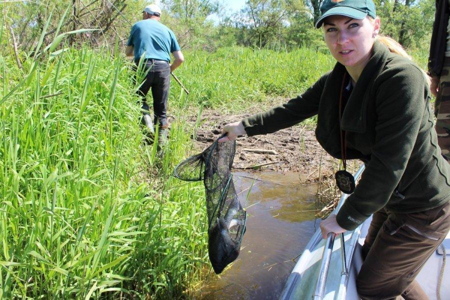 Leidimas zvejoti nemuno deltoje