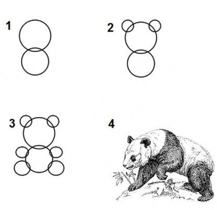 Kiekviena instrukcija, kaip piešti, tokia pat aiški