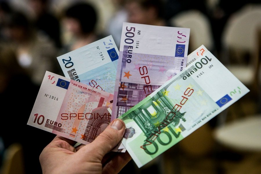 Įstatų keitimas dėl euro įvedimo pavyzdys
