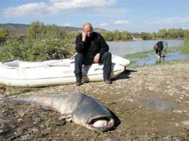 V.Malinauskas pagavo 114 kg šamą
