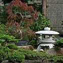 Kęstučio Ptakausko japoniškas sodas Alytuje_12