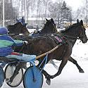 """Žirgų lenktynės """"Sartai 2007"""""""