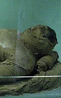 Egiptologijos muziejaus eksponatas