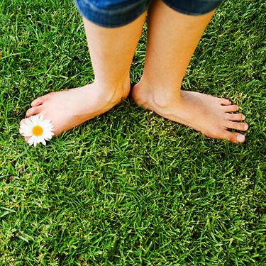 Basos kojos, žolė