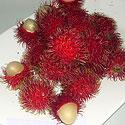 Rambutano vaisiai
