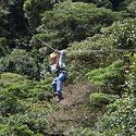 Skrydis virš Kosta Rikos džiunglių