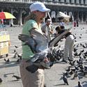 Venecijoje