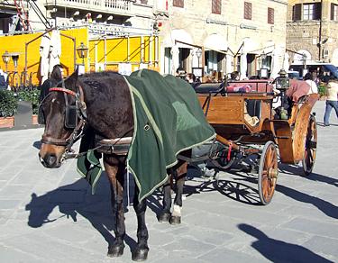 Florencija, arkliukas Sinjorijos aikštėje
