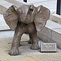 Dramblio skulptūra