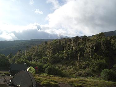 Kopimas į Kilimandžarą, Machame_9