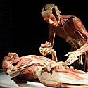 Plastinuoti kūnai