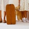 atostogos, kelionė, lagaminai, šeima, meškiukas