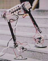 """Robotukas """"Yambo III"""""""