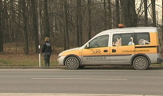 19 šunų nužudymas – pirmasis viešo sadizmo protrūkis Lietuvoje