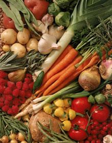 Antioksidantai išsaugo arterijų sveikatą