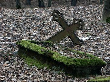 Išniekintos kapinės, vandalai