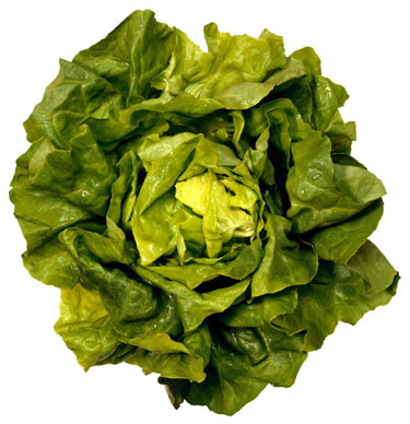 Salotos, daržovės
