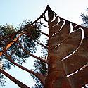 Europos parke atidengiama nauja skulptūra