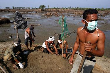 Indonezijos Ačecho provincijoje laidojami žuvusieji per cunamį