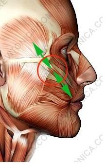 Galvos skausmas viename taške