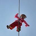 Mažoji kinų akrobatė
