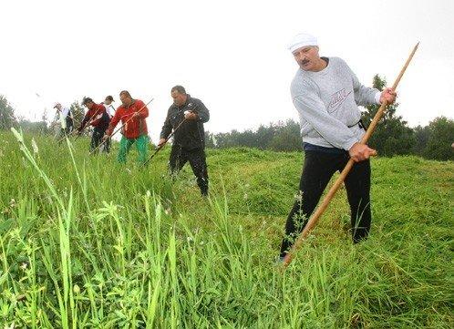 Лукашенко косит траву, фото: БЕЛТА