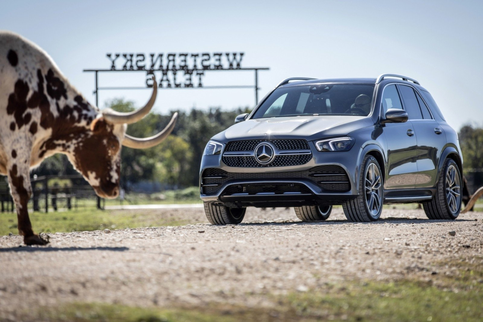 Mercedes Livestock Show 2020.Mercedes Benz Pasigyrė Naujajame Gle Dar Nenaudotos