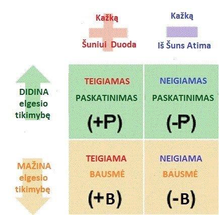 Operantinio sąlygojimo teorija