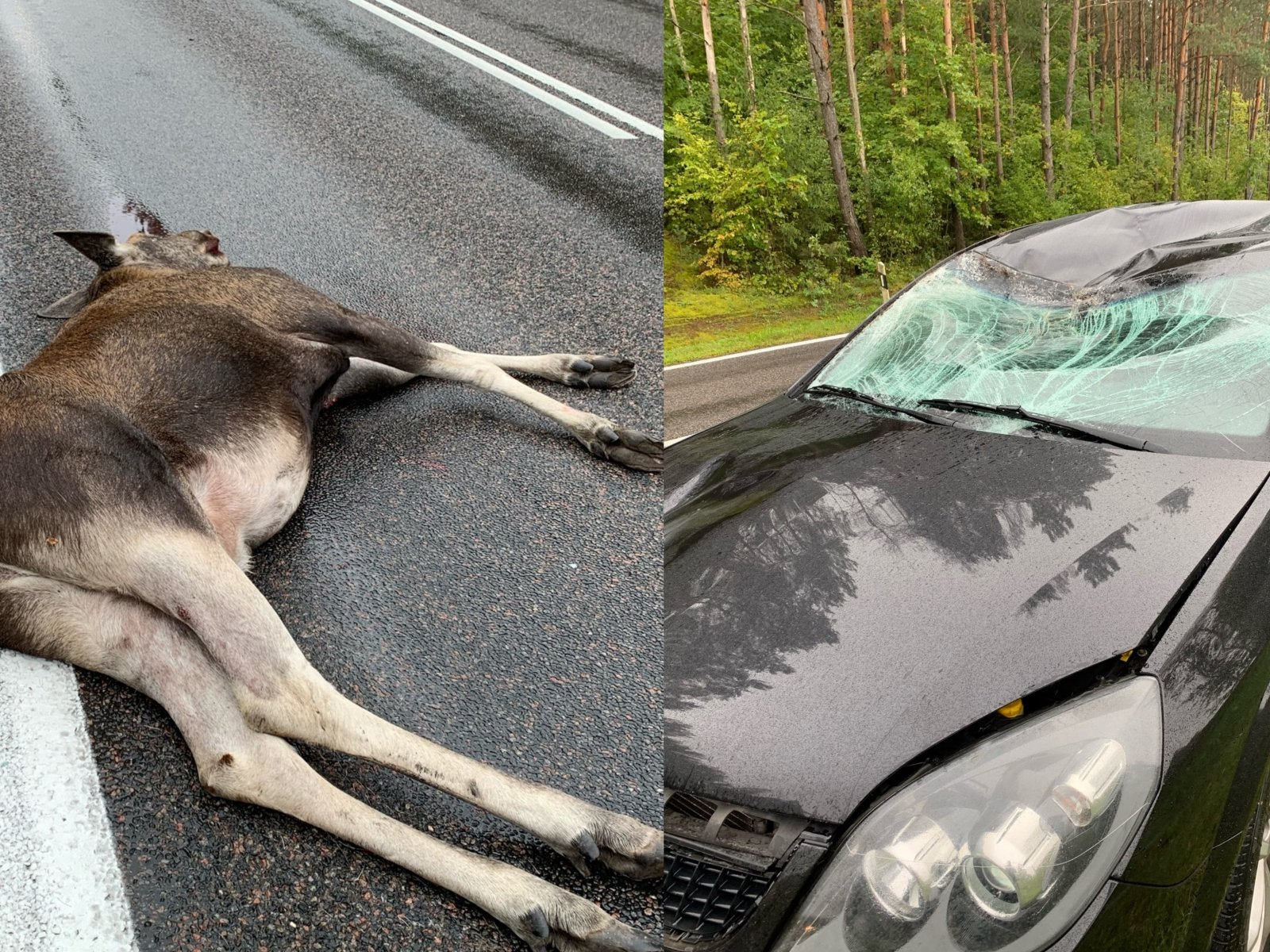 ФОТО, ВИДЕО. Крупная авария на трассе Рига-Сигулда: столкнулись пять машин