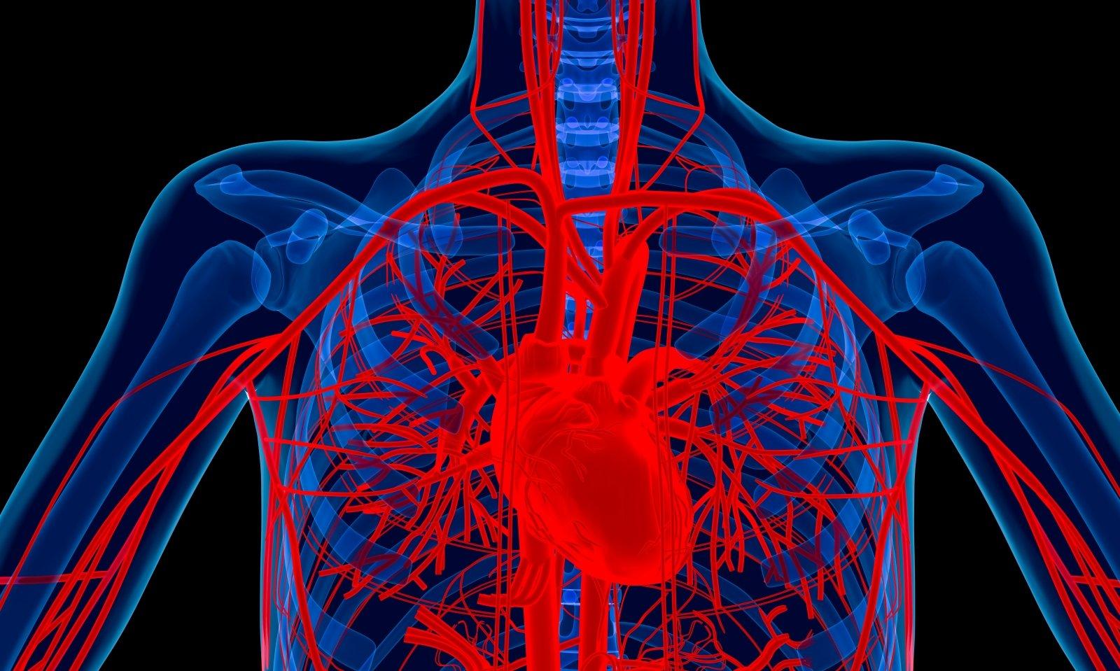 išgydyti hipertenziją vaizdo)