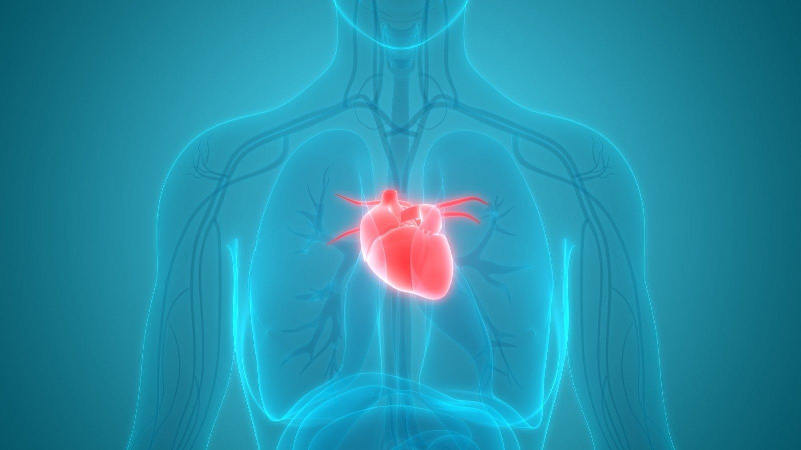 hipertenzija 2 laipsnio mityba kaip hipertenziją gydyti išemija